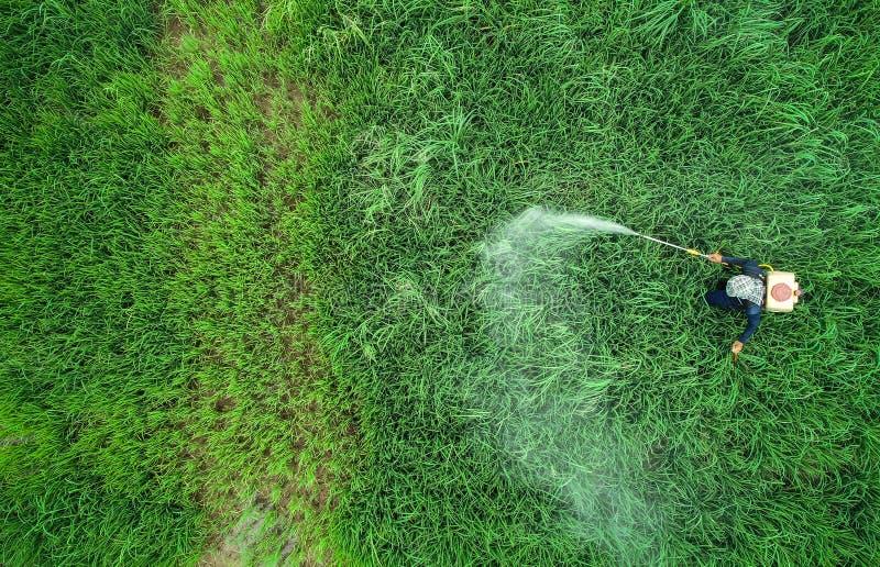 Luchtmening van Vliegende Hommel Thais landbouwers bespuitend chemisch product aan royalty-vrije stock fotografie