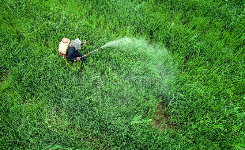 Luchtmening van Vliegende Hommel Thais landbouwers bespuitend chemisch product aan stock foto's