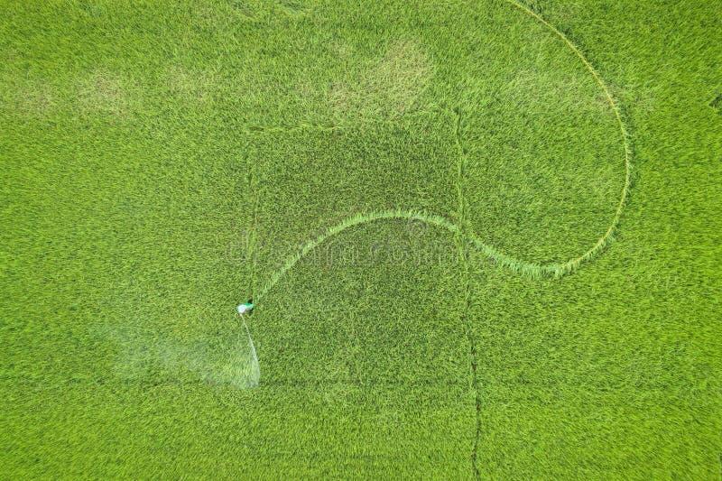 Luchtmening van Vliegende Hommel Thais landbouwers bespuitend chemisch product aan stock afbeeldingen