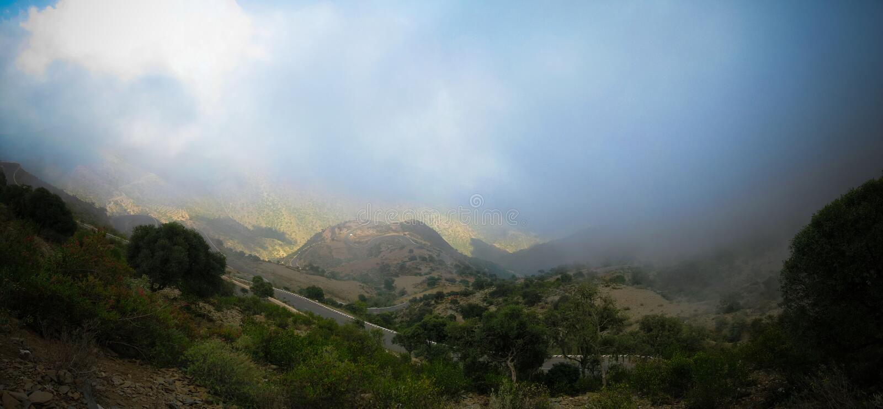 Luchtpanorama aan Filfil-regenwoud, Eritrea royalty-vrije stock afbeeldingen