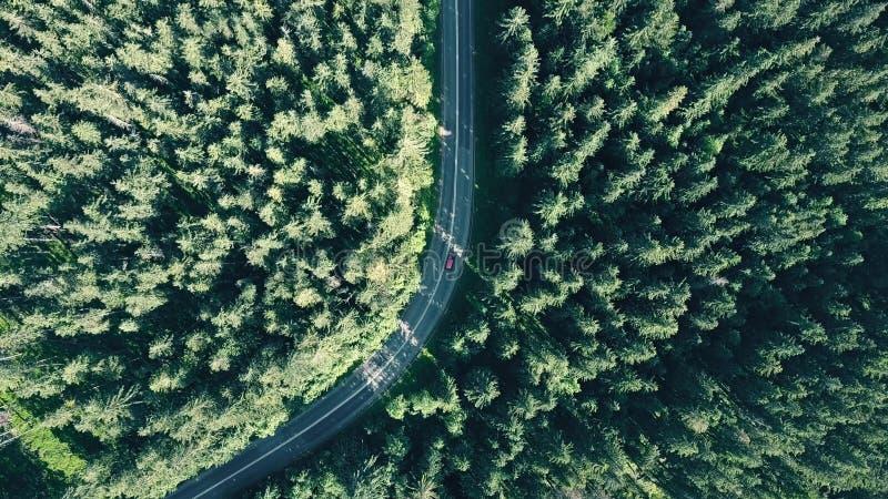 Luchttop down mening van een sparren Europees bos en een rode auto die op de weg verzenden stock afbeeldingen
