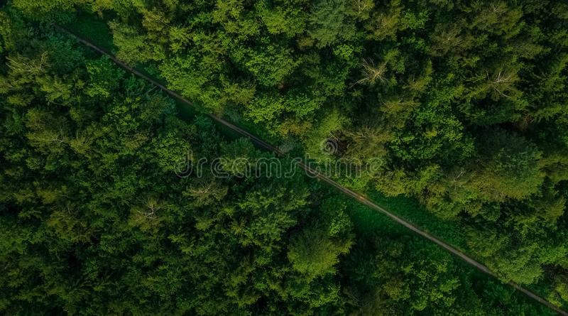 Luchtveiw van lege weg in groen boshommelschot stock fotografie