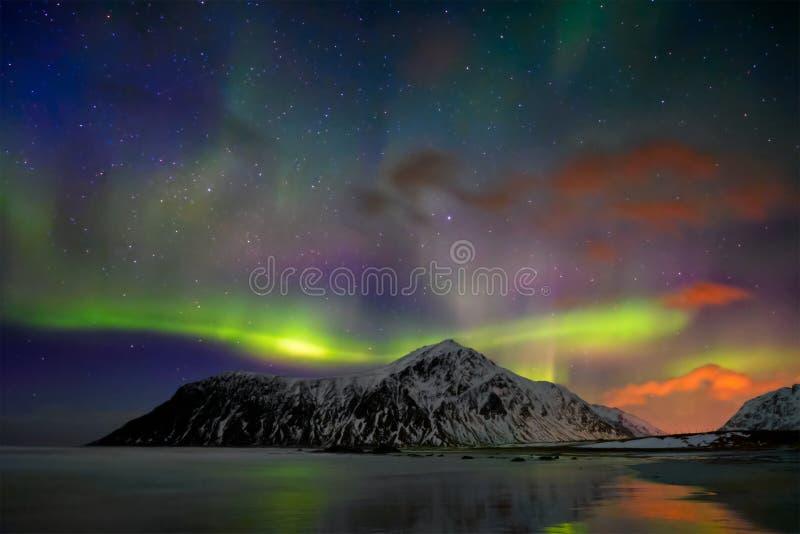 Luci di Aurora Borealis Northern Isole di Lofoten, Norvegia immagini stock libere da diritti