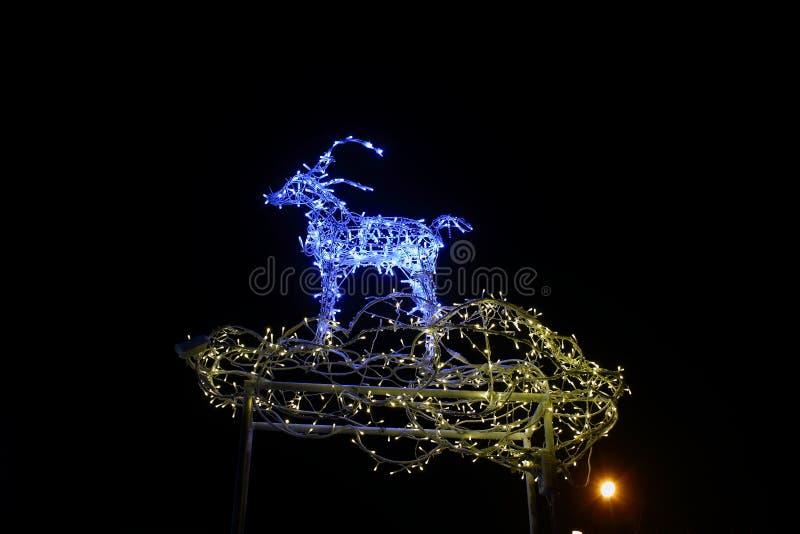 Luci di Natale dei cervi fotografia stock libera da diritti