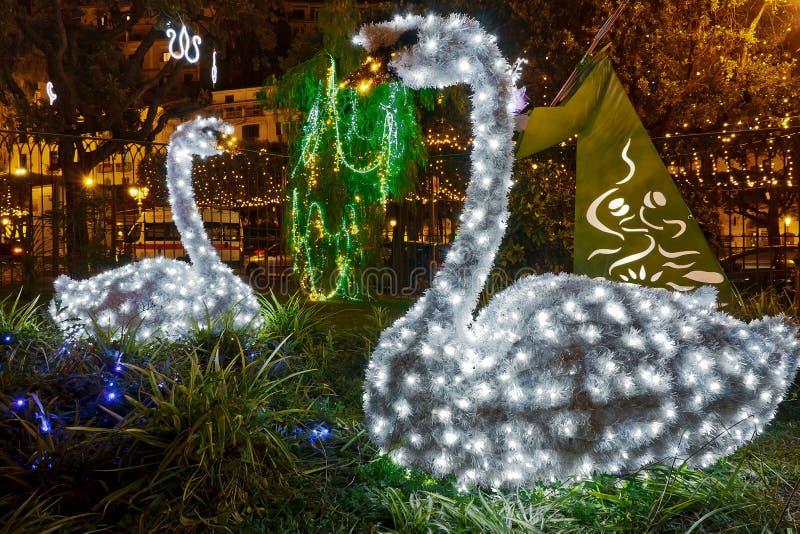 Luci di Natale in Salerno fotografia stock libera da diritti
