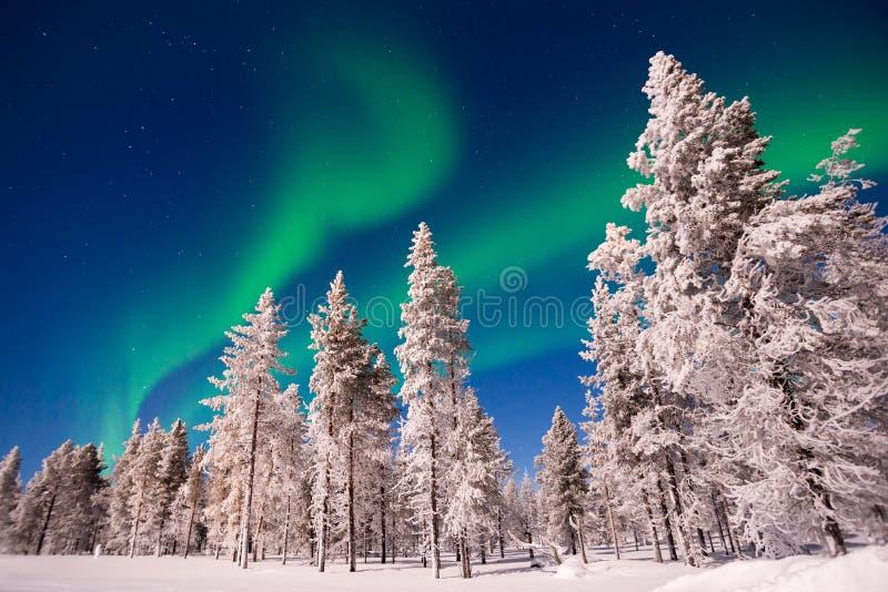 Luci settentrionali, Aurora Borealis in Lapland Finlandia fotografia stock libera da diritti