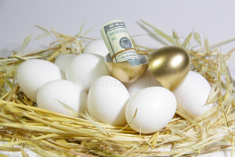 Luck_Golden_Egg 免版税库存照片