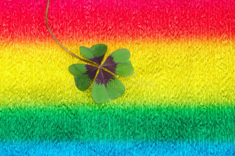 Lucky clover on colorful crepe paper. The picture shows lucky clover on colorful crepe paper stock photography