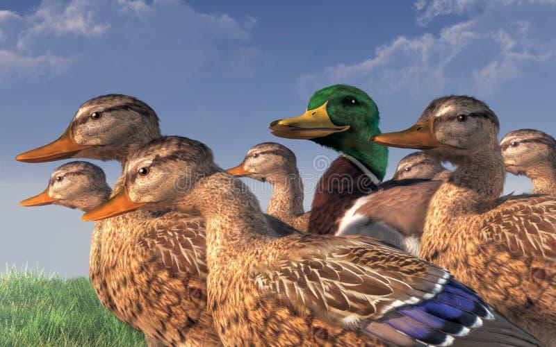 Lucky Duck stock illustratie
