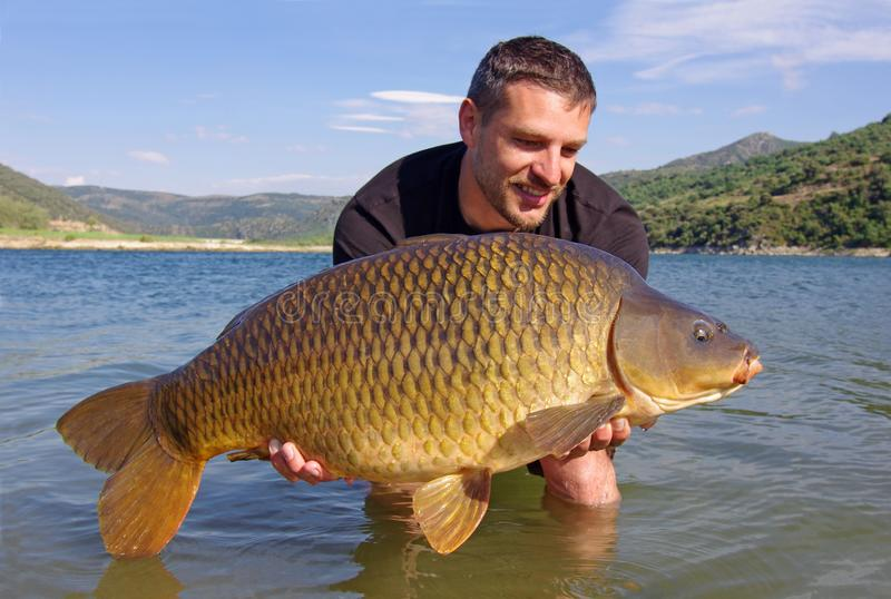 Carp fishing. Catch and release stock photo