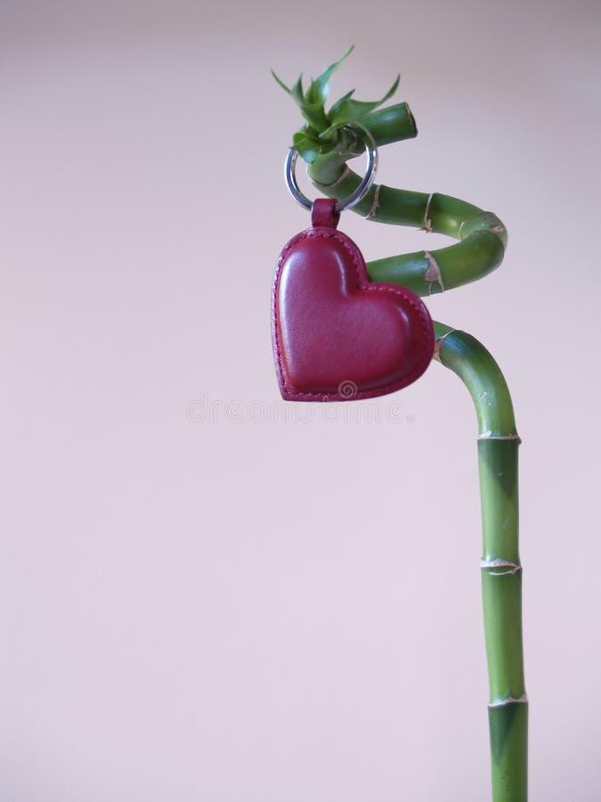 Lucky Love - coração do amor & vara 4 do bambu imagem de stock royalty free