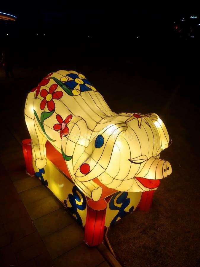 Lucky Pig i nytt år royaltyfria foton