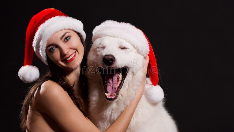 Luda Affronti il cappello di Natale con il cane, il fondo nero, occhi azzurri! fotografie stock libere da diritti