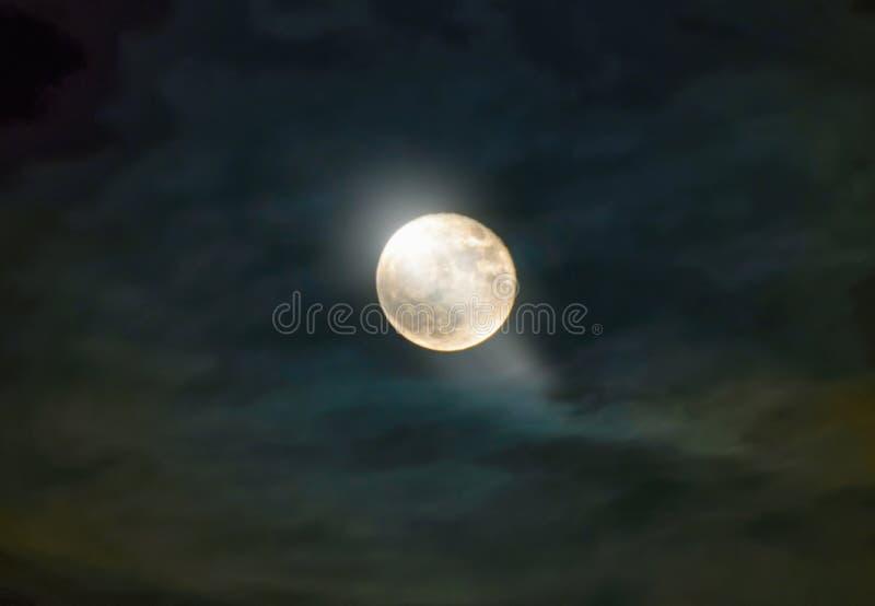 Luddig natt med fullmånen royaltyfri foto