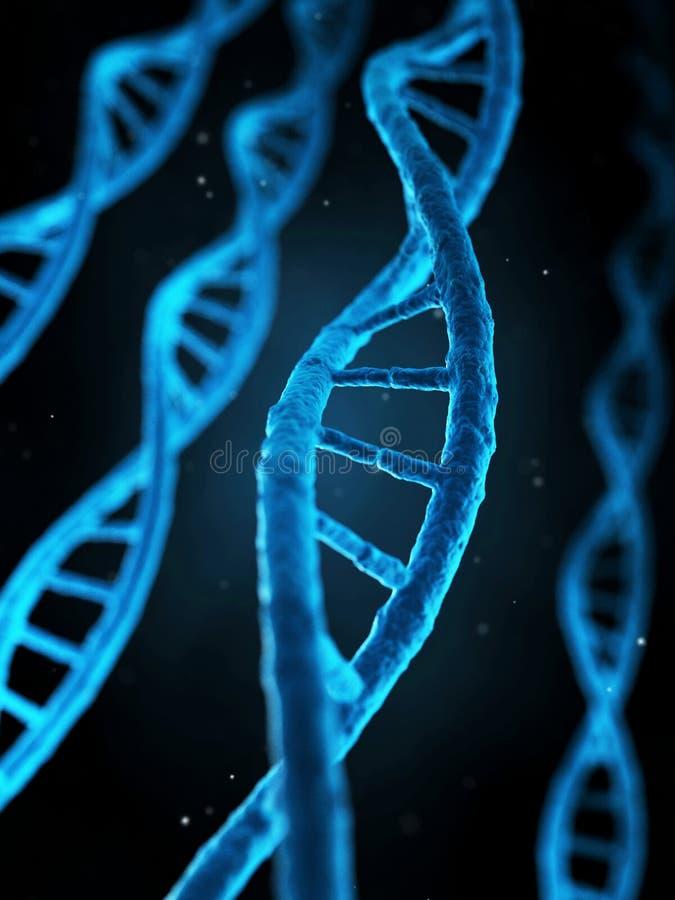 Ludzcy geny ilustracji
