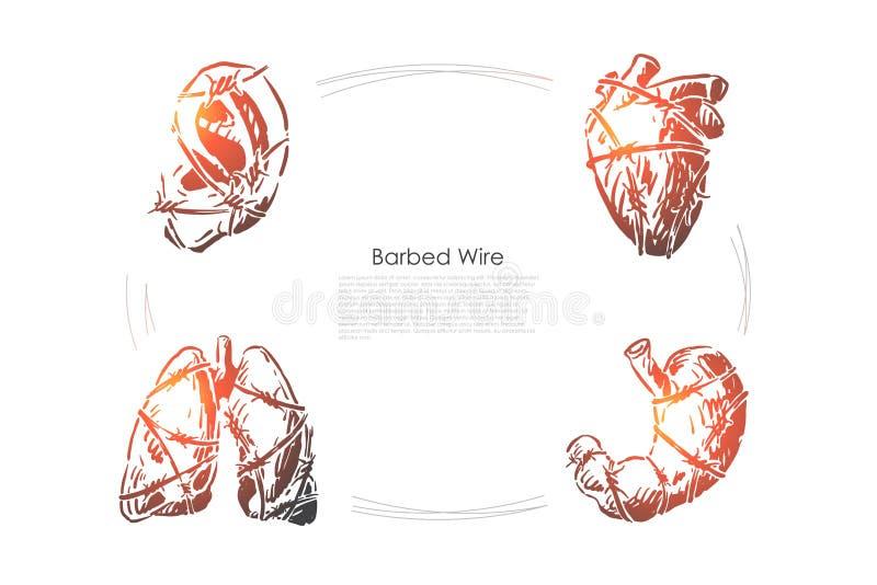 Ludzcy organy z drutem kolczastym, ucho, sercem, p?ucami i ?o??dkiem, zawa? serca, stomachache, opieka zdrowotna sztandar royalty ilustracja