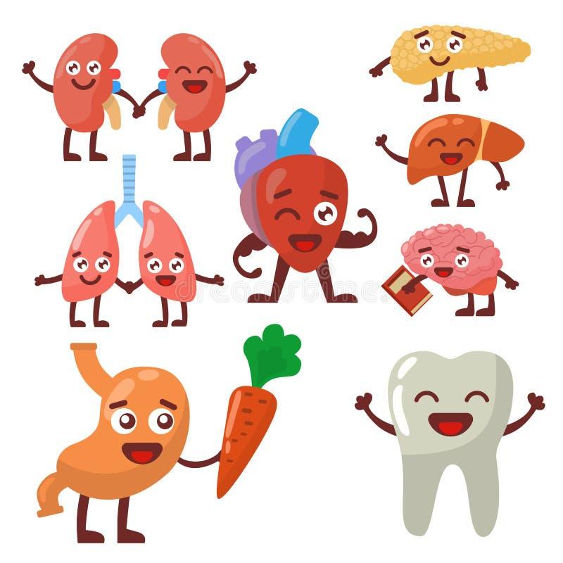 Ludzcy organy zdrowi i niezdrowy anatomic śmieszny postać z kreskówki dobierać do pary wektor royalty ilustracja