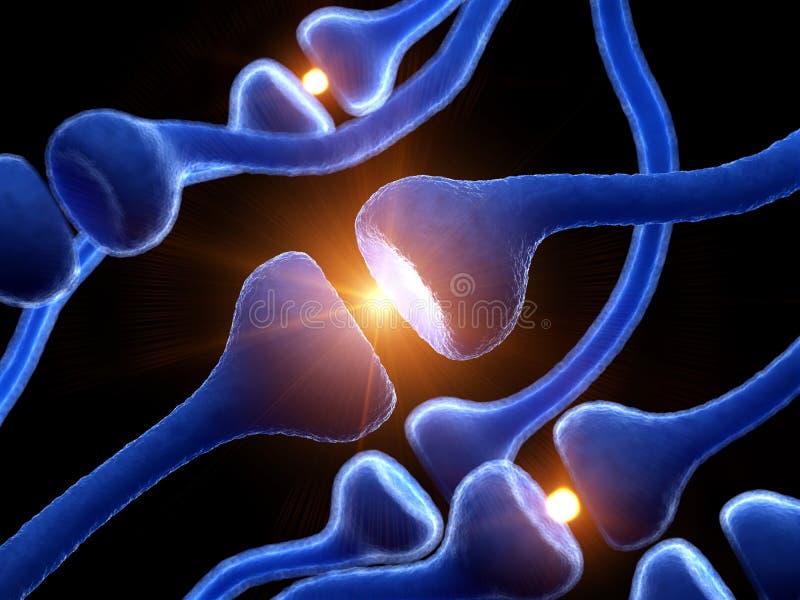 Ludzcy receptory ilustracja wektor