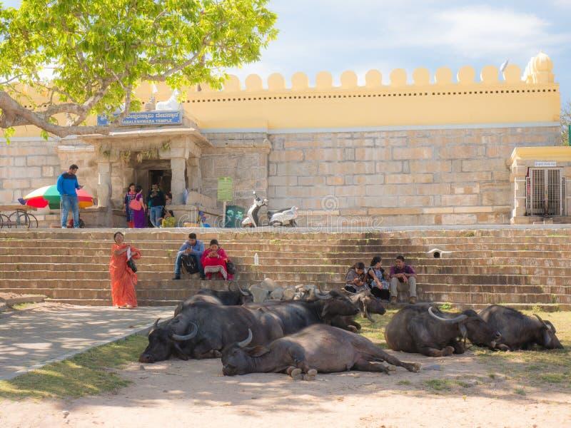 Ludzie aktywność blisko antycznej Chamundeshwari świątyni przy Chamundi wzgórzami zdjęcie stock