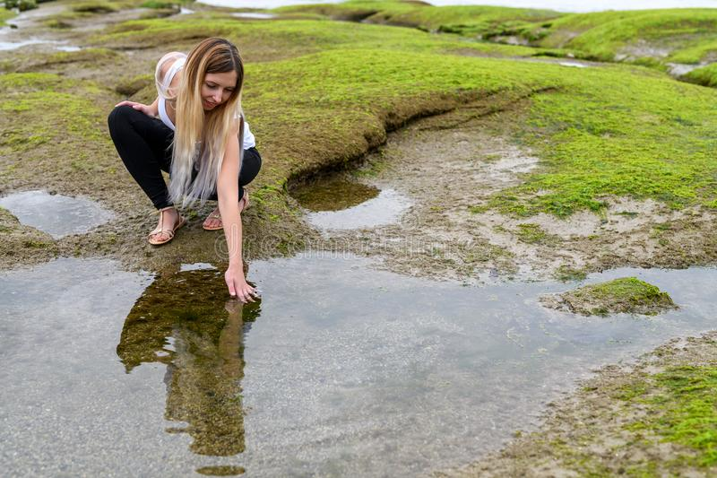 Ludzie bada intertidal strefę Vancouver, Brytyjski Colum obraz royalty free