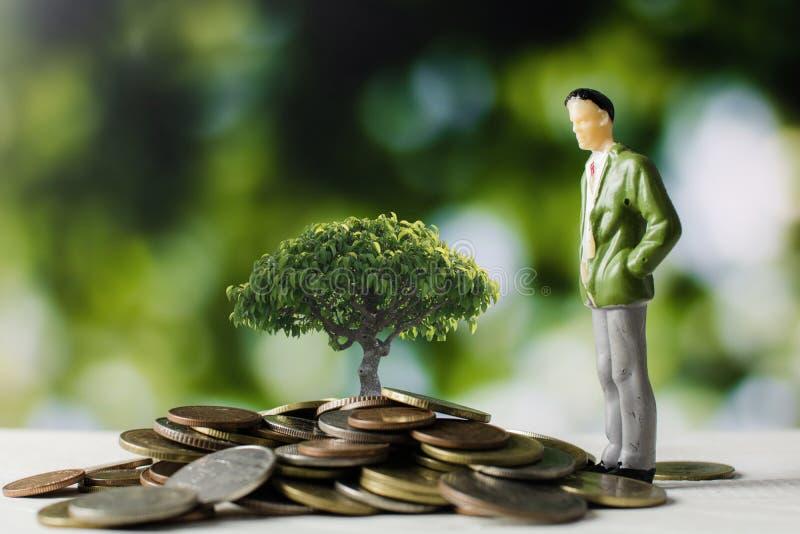 Ludzie biznesu modelują z pieniądze monetami z małym drzewnym dorośnięciem obraz royalty free