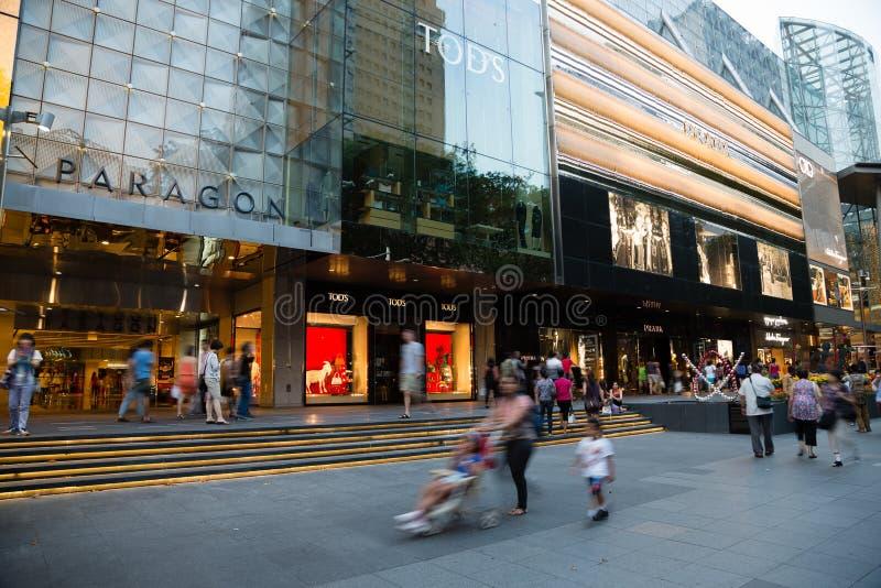 Ludzie chodzą sad drogę w Singapur zdjęcia royalty free