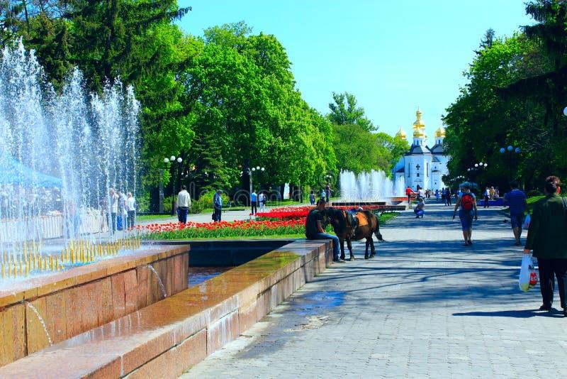 Ludzie chodzą w parku z kwiat fontannami i łóżkami obraz royalty free