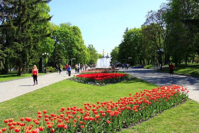 Ludzie chodzą w parku z kwiat fontannami i łóżkami zdjęcie royalty free