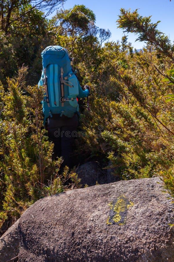 Ludzie chodzi z wielkimi plecakami w góra krajobrazie - trekking wycieczkujący mountaneering w mantiqueira pasmie Brazylia obrazy royalty free