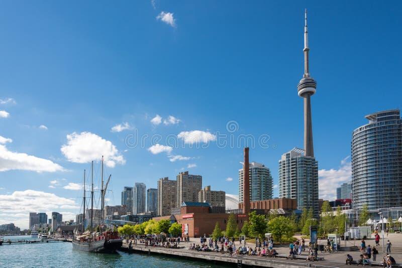 Ludzie cieszy się pięknego pogodnego popołudniowego pobliskiego jeziornego Ontario w T obraz royalty free