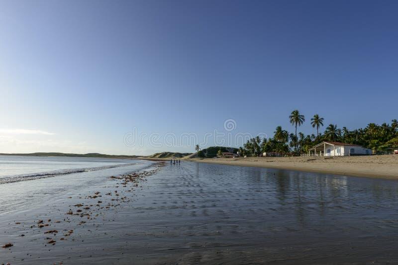 Ludzie czeka na plaży, Pititinga (Brazylia) zdjęcie royalty free