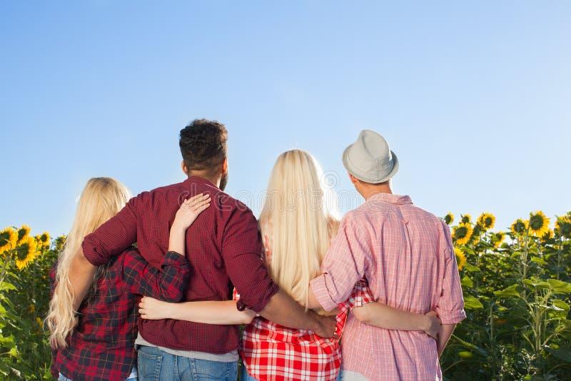 Ludzie grupują plenerowych wieś słoneczników niebieskiego nieba tyły plecy śródpolnego widok obrazy royalty free