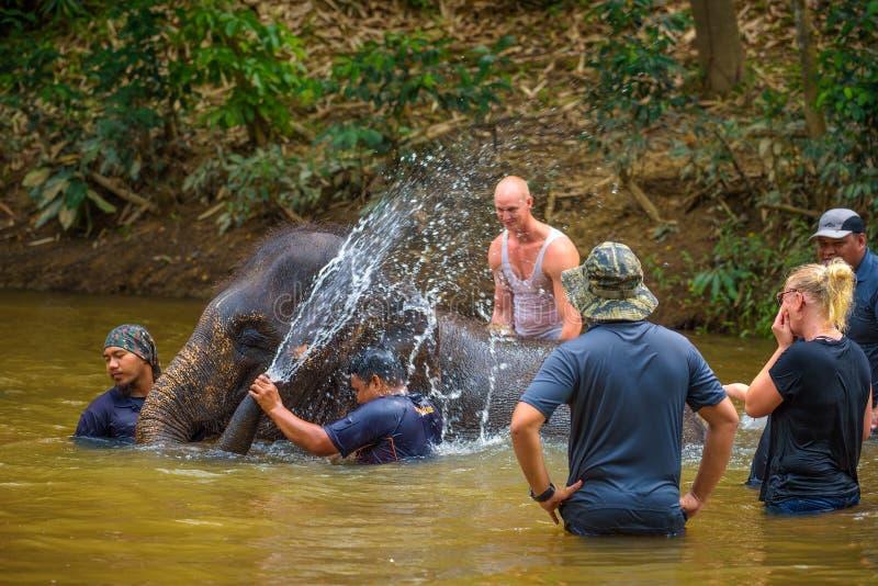 Ludzie kąpać się z dziecko słoniem obraz stock
