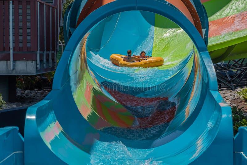 Ludzie ma zabawy Kare Kare kędzior przy Aquatica 6 zdjęcia royalty free