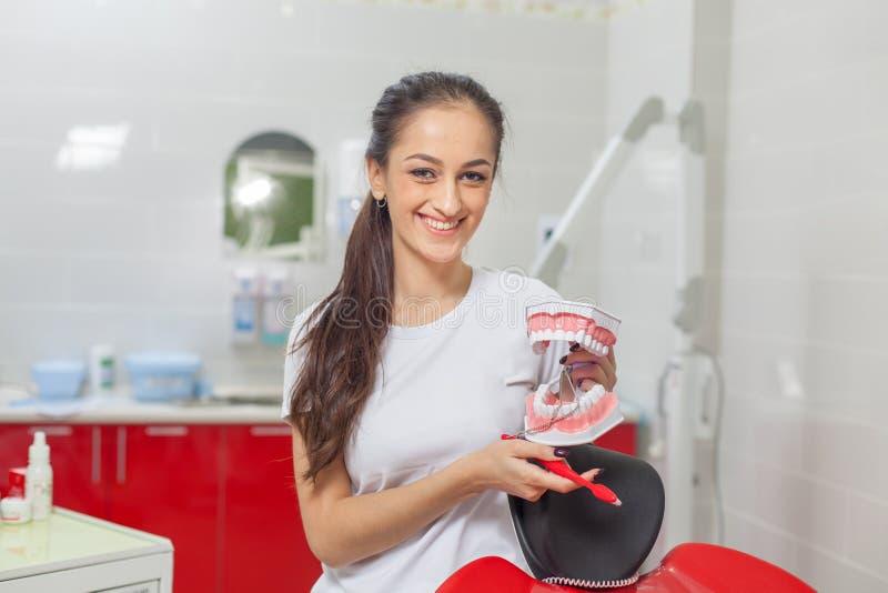 Ludzie, medycyna, stomatologia i opieka zdrowotna - szczęśliwa młoda dentystka trzymająca model zębów i uśmiechająca się fotografia royalty free