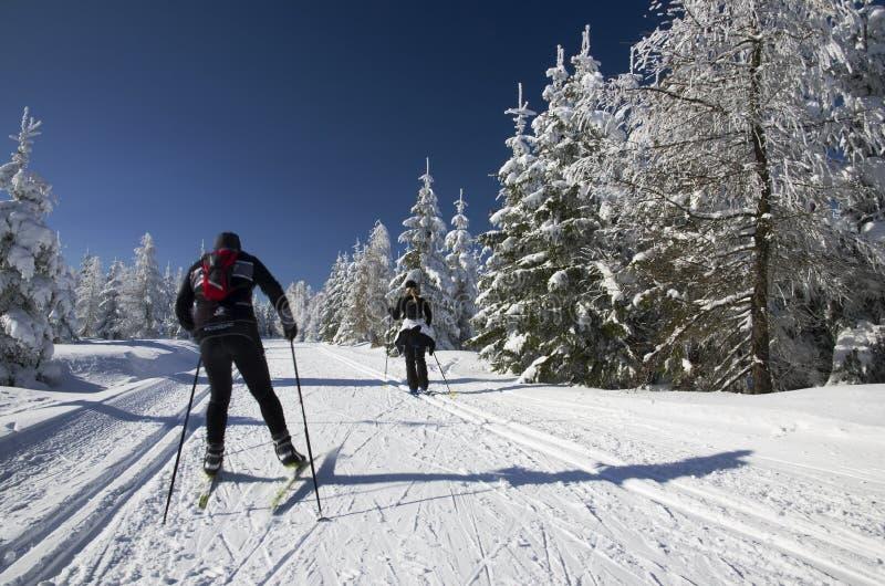 Ludzie na przez cały kraj narciarskich śladach obrazy stock