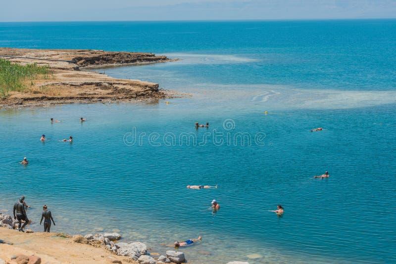 Ludzie pływa kąpanie w nieżywym morzu Jordan obrazy stock