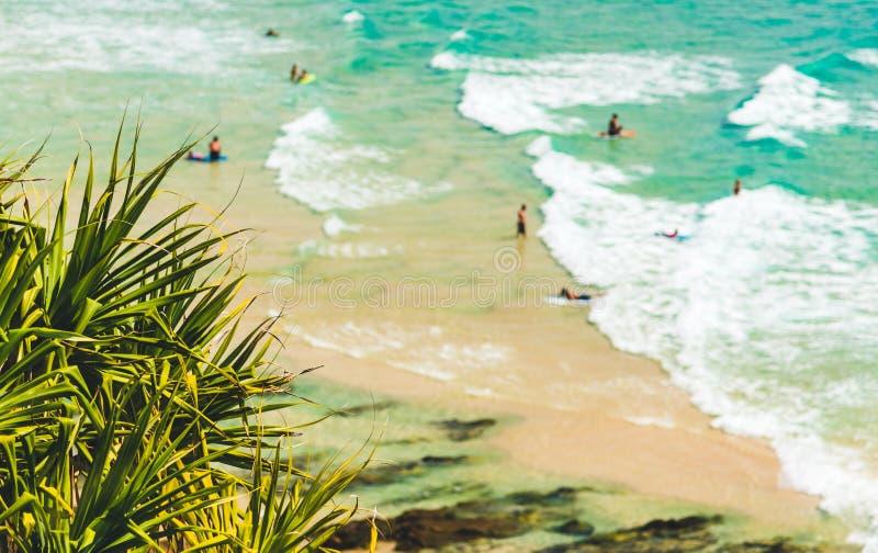 Ludzie Pływa przy plażą fotografia royalty free