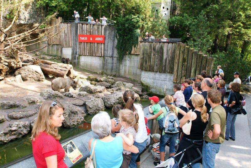 Ludzie patrzeje brown niedźwiedzi w zoo Goldau obrazy stock