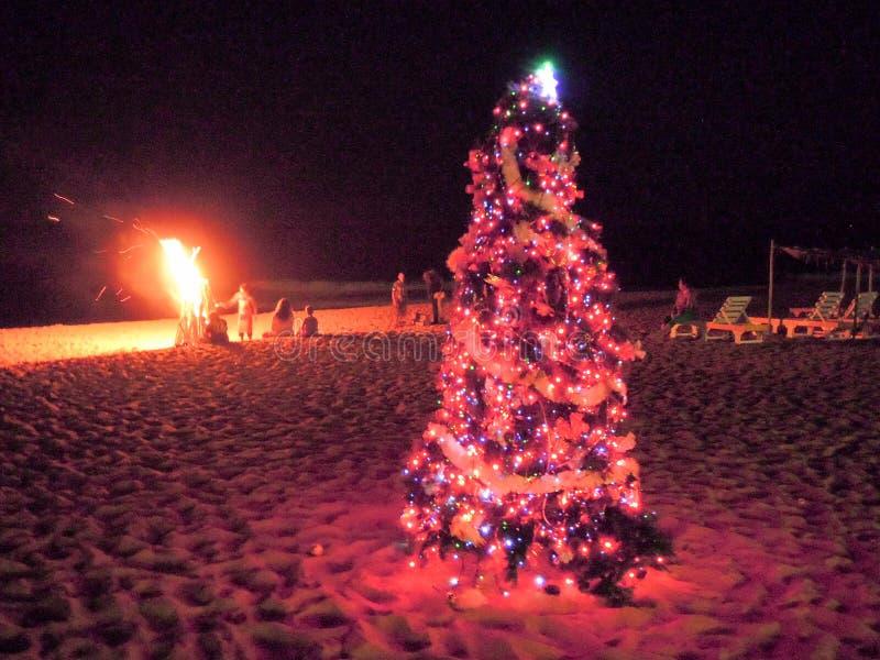 Ludzie patrzeje fajerwerki na plaży Candolim zdjęcia royalty free