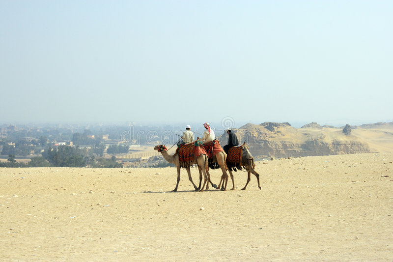 ludzie pustyni arabskiej obraz royalty free