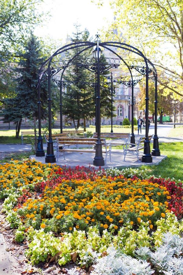 Ludzie relaksuje w centrala parku od fortelu obraz royalty free
