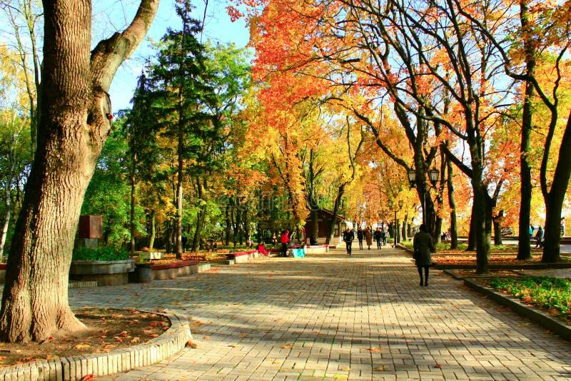 Ludzie spaceru w jesiennym miasto parku fotografia stock