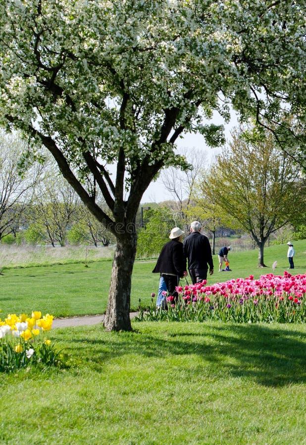 Ludzie starzy i młodzi w ogródzie obrazy royalty free