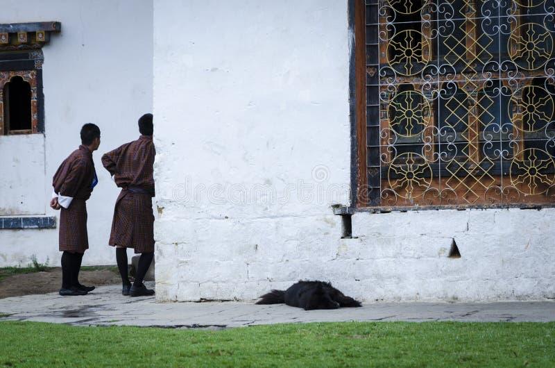 Ludzie stoi w tradycyjnej sukni zdjęcie stock