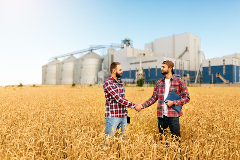 Ludzie trząść ręki w pszenicznym polu, średniorolna ` s zgoda Zbożowej windy terminal na tle Rolnictwo agronom zdjęcia stock