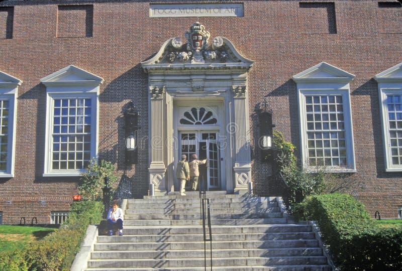Ludzie Wchodzić do Fogg muzeum sztuki, Cambridge, Massachusetts zdjęcie royalty free