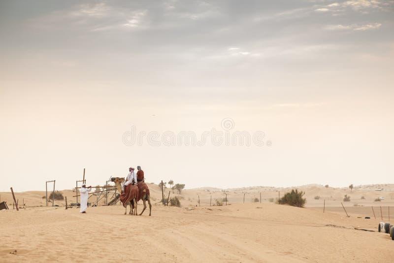 Ludzie wielbłądziej jazdy w pustyni zdjęcie royalty free