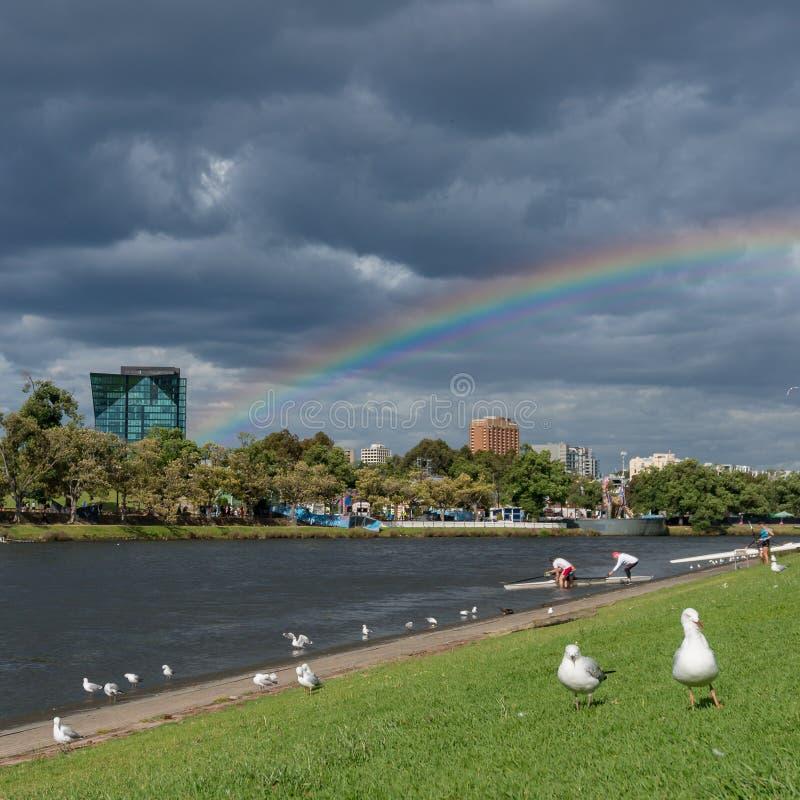 Ludzie wiosłuje na Yarra rzece w Melbourne z tęczą na półdupkach fotografia royalty free