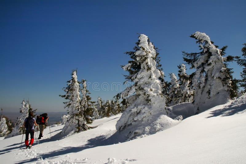 Ludzie wycieczkuje w pięknych zim górach zdjęcia stock